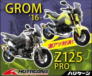 300x250px_z125grom_03